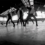 MAP6(맵식스) 「I'm Ready ~JP.ver~」MV